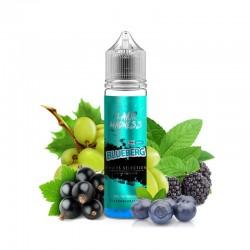 Fruit Selection - Blueberg